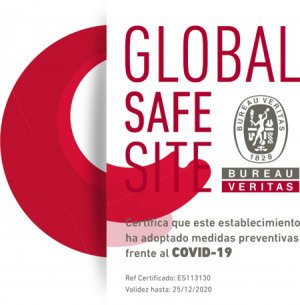 Logo Global Safe Site