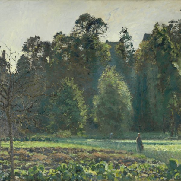 The Cabbage Field, Pontoise