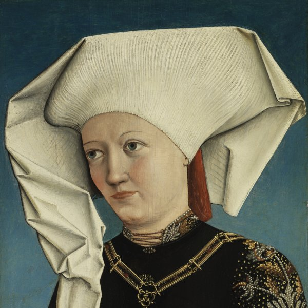 Portrait of a Lady wearing the Order of the Swan