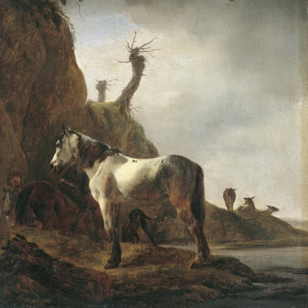 White Horse on a River Bank