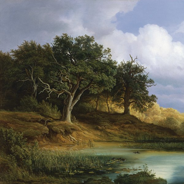 Oaks beside the Water
